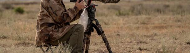 1号站注册:北山羊:用EOS-1D X Mark III领略伊犁鸟类的风采