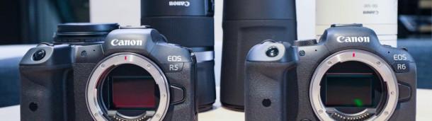 一号站官方: 从今往后,尛器材拍奆照片:EOS R5/R6及RF手炮摸后感