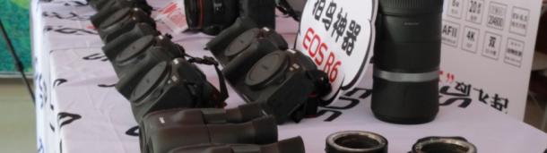 一号站平台登录: 观鸟中国行走进青州 EOS寻影生态之城