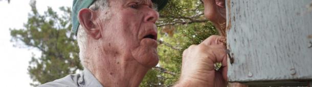 一号站注册登录: 这位96岁的老人把爱达荷州南部变成了蓝鸟的天堂