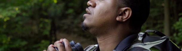 一号站官方:从布朗克斯观鸟到屏幕上的观鸟,这是一段旅程