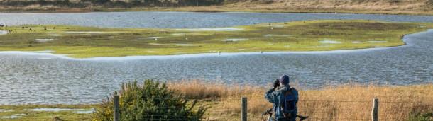 一号站官方: 观鸟者们发现了一个让好日子更美好的秘密——自行车