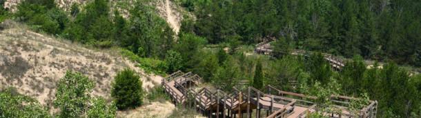 一号站平台登录: 去印第安纳州的第一个国家公园吧,那里鸟类比比皆是