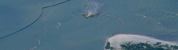 一号站平台登录:一波又一波的反对阻止了内务部扩大近海钻探的计划