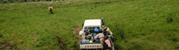 一号站官方:科学家们争分夺秒地揭开马达加斯加森林宝藏的秘密