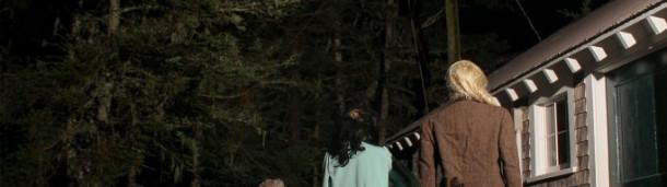 一号站平台登录:猪岛鱼鹰幼鸟被大角枭从巢中抢走