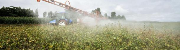 一号站官方:EPA批准使用有争议的杀虫剂引起了对蜜蜂和鸟类的关注