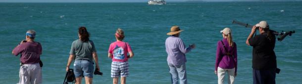 一号站官方:随着水位继续上涨,佛罗里达的Keys面临严峻的未来