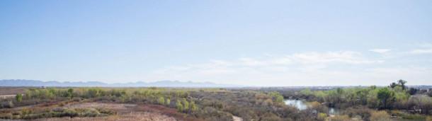 一号站平台登录:本地植物帮助恢复科罗拉多河